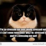 Two Very Quick Ways To Stop Feeling Stressed!