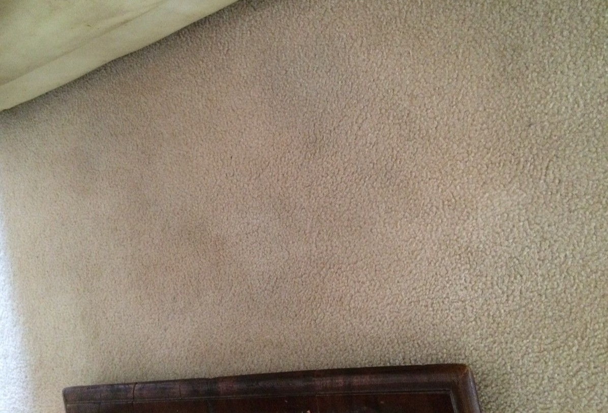 How To Remove Stubborn Carpet Stains With An Iron