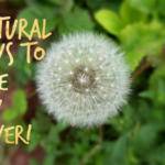 Natural Ways To Ease Hay Fever!